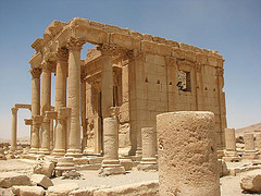 Palmyra photo
